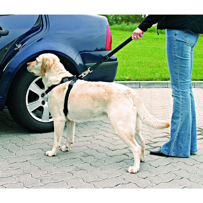 Автомобильный ремень безопасности Trixie для собак, 70-90 см. фото