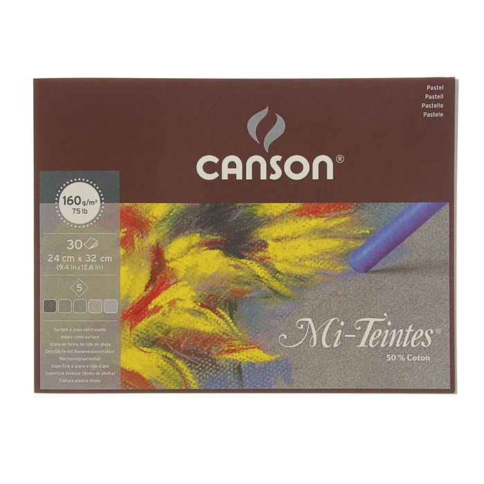 Альбом для пастели С4 240*320 мм Canson Mi-Teintes 5 160 г/м2, 30 листов, серые тона, склейка 400030143 фото