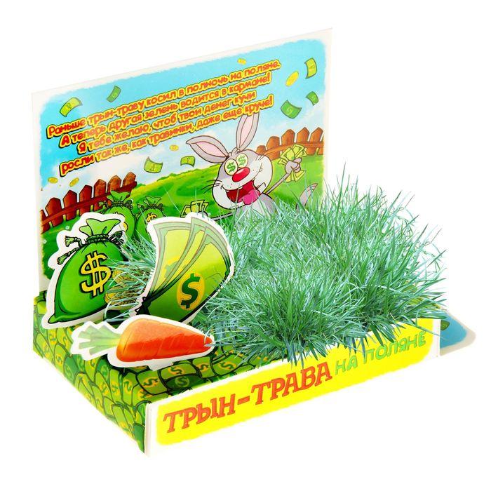 Открытка-растущая трава